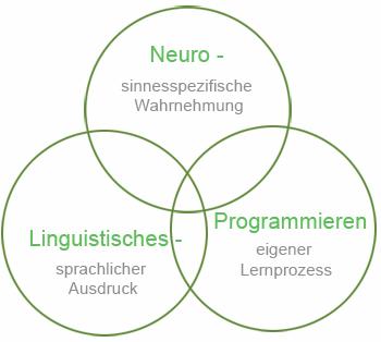 """NLP, Graphische Darstellung der Komponenten des """"Neurolinguistischen Progammierens"""""""